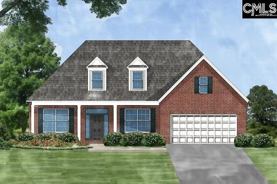 Lexington County, Richland County Single Family Home For Sale: 141 Living Waters