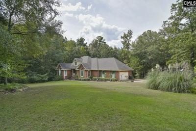Lexington County, Newberry County, Richland County, Saluda County Single Family Home For Sale: 367 Koon Trestle