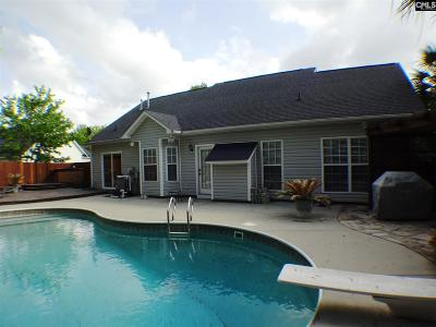 Waterfall Single Family Home For Sale: 203 Whitewater