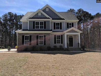 Lexington County, Richland County Single Family Home For Sale: 107 Buccaneer