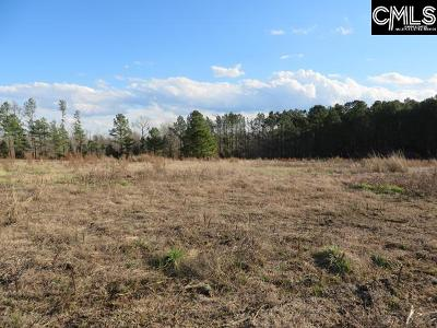 Lexington County, Richland County Residential Lots & Land For Sale: 3835 Highway 378