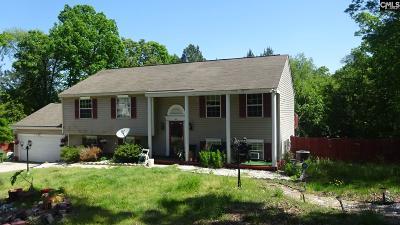Carson Hills Single Family Home For Sale: 125 Winesett