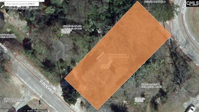 Orangeburg Single Family Home For Sale: 384 Ferris