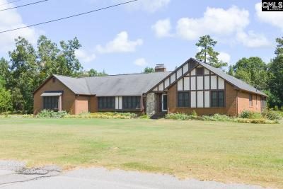 Orangeburg Single Family Home For Sale: 486 Woodberry