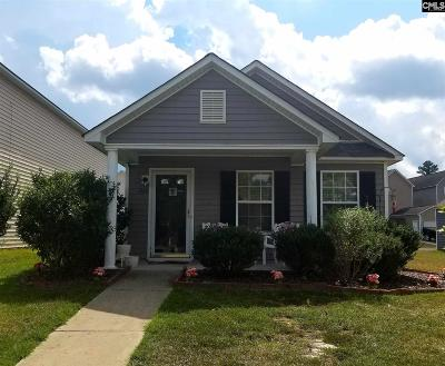 Lexington County, Richland County Single Family Home For Sale: 1164 Rabons Pond