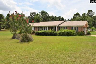 Lexington County, Newberry County, Richland County, Saluda County Single Family Home For Sale: 1851 Dutch Fork