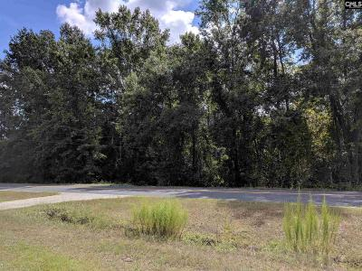 Lugoff Residential Lots & Land For Sale: 1281 Longtown