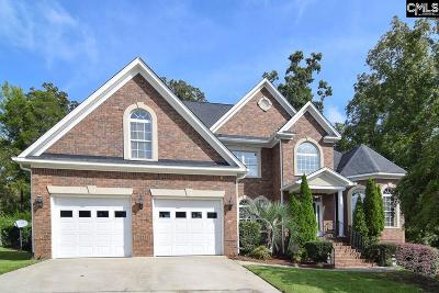 Chapin Single Family Home For Sale: 133 Hawks Ridge