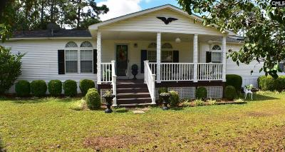Columbia Single Family Home For Sale: 716 Fore