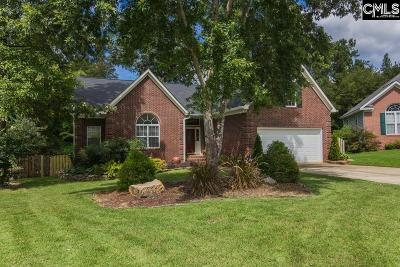 Lexington County, Richland County Single Family Home For Sale: 113 Johns Hill Ln