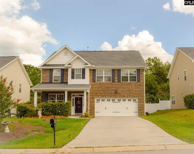 Lexington County Single Family Home For Sale: 140 Hammock