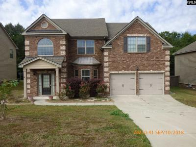 Aiken Single Family Home For Sale: 1139 Prides