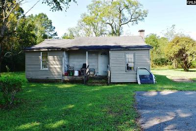 Lexington County, Richland County Single Family Home For Sale: 112 Kirk