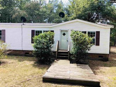 Pelion Single Family Home For Sale: 228 Minnie Fallaw