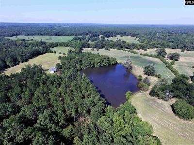 Blythewood, Ridgeway, Winnsboro, Ballentine, Columbia, Eastover, Elgin, Forest Acres, Gadsden, Hopkins Residential Lots & Land For Sale: 9 Fairfield Hill