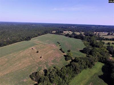Blythewood, Ridgeway, Winnsboro, Ballentine, Columbia, Eastover, Elgin, Forest Acres, Gadsden, Hopkins Residential Lots & Land For Sale: 11 Fairfield Hills