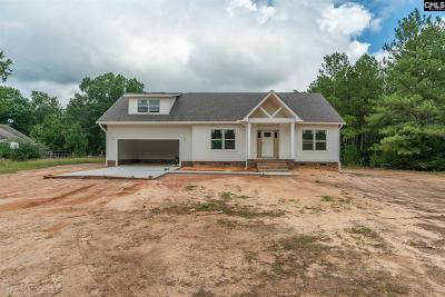 Chapin SC Single Family Home For Sale: $289,000