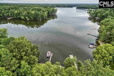 Lexington County, Newberry County, Richland County, Saluda County Single Family Home For Sale: 161 Beaver Dam