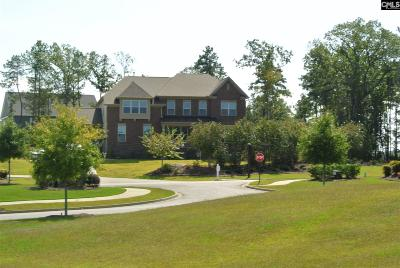 Lexington County, Richland County Single Family Home For Sale: 1012 Portrait Hill Dr