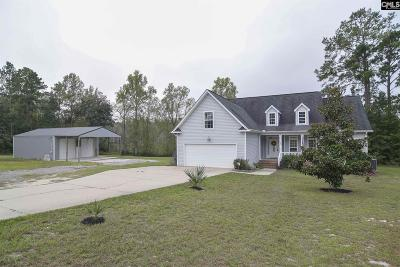Single Family Home For Sale: 1998 Old Orangeburg