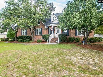 Lexington County Single Family Home For Sale: 1220 Robert Hendrix