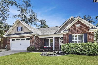 Chapin Single Family Home For Sale: 324 Lighthouse