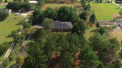 Blythewood Single Family Home For Sale: 133 Adams Pond