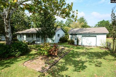 Lexington County Single Family Home For Sale: 239 Pound