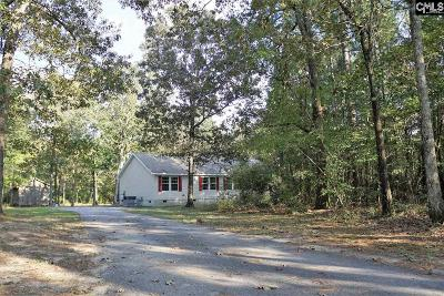 Lexington County Single Family Home For Sale: 2541 Pine