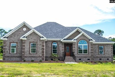 Orangeburg Single Family Home For Sale: 160 Sago Palm