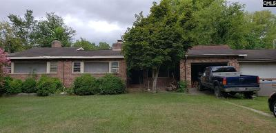 Orangeburg Single Family Home For Sale: 681 Seawright