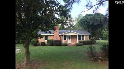 Lexington County Single Family Home For Sale: 411 Kyzer