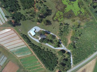 Lexington County, Newberry County, Richland County, Saluda County Single Family Home For Sale: 27582 Us Highway 76