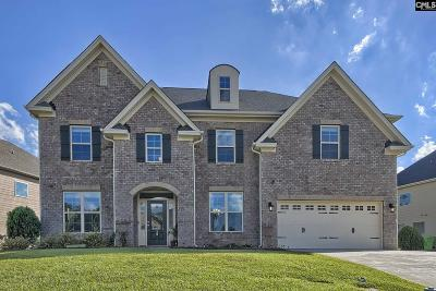 Chapin Single Family Home For Sale: 20 Mapleline