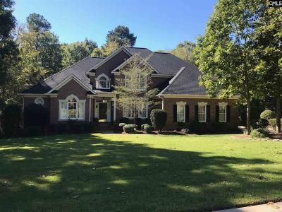 Irmo Single Family Home For Sale: 224 Treyburn