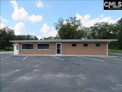 Leesville SC Commercial For Sale: $198,500