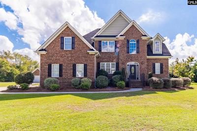 Lexington County Single Family Home For Sale: 301 Rawl
