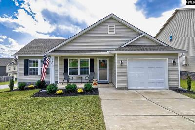 Lexington County Single Family Home For Sale: 349 Riglaw
