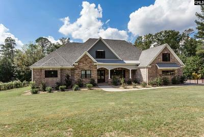 Lexington County Single Family Home For Sale: 463 Old Chapin Rd