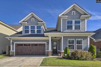 Chapin, Gilbert, Irmo, Lexington, West Columbia Single Family Home For Sale: 225 Otter Passage