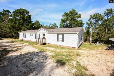 Gaston Single Family Home For Sale: 257 Straightaway