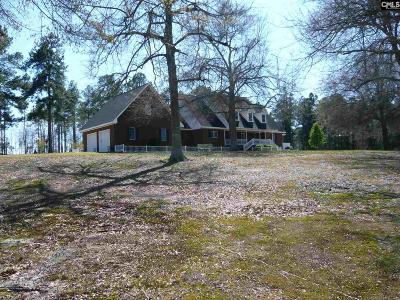 Orangeburg Single Family Home For Sale: 464 Bill Salley