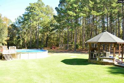Batesburg, Leesville Single Family Home For Sale: 309 Buck Smith