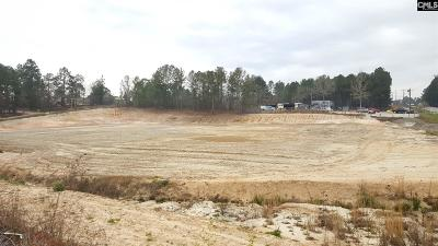 Blythewood, Ridgeway, Winnsboro, Columbia, Elgin, Ballentine, Eastover, Forest Acres, Gadsden, Hopkins Residential Lots & Land For Sale: 10888 Two Notch