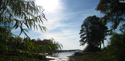 Fairfield County, Lexington County, Richland County Residential Lots & Land For Sale: Dockside