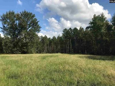 Ridge Spring Residential Lots & Land For Sale: Ridgeview Lake
