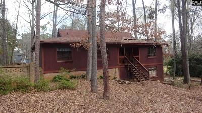 Lexington County, Richland County Single Family Home For Sale: 1360 Country Squire