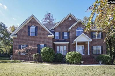 Lexington County, Richland County Single Family Home For Sale: 313 Carola Ln