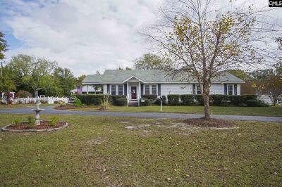 Lexington County Single Family Home For Sale: 2809 Mineral Springs Rd