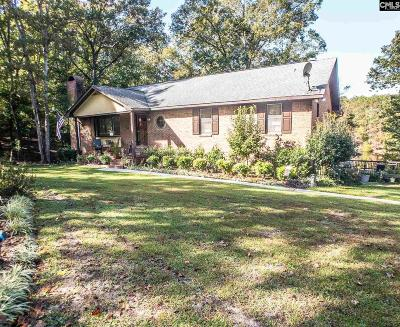Irmo Single Family Home For Sale: 100 Lookout